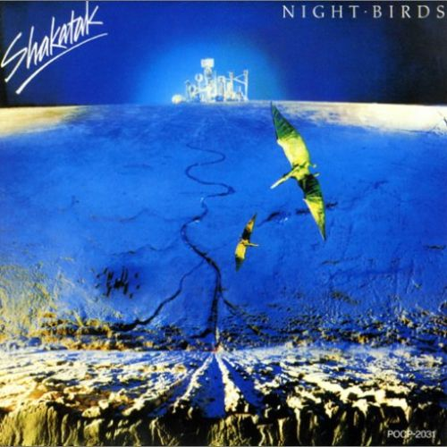 night birds album cover